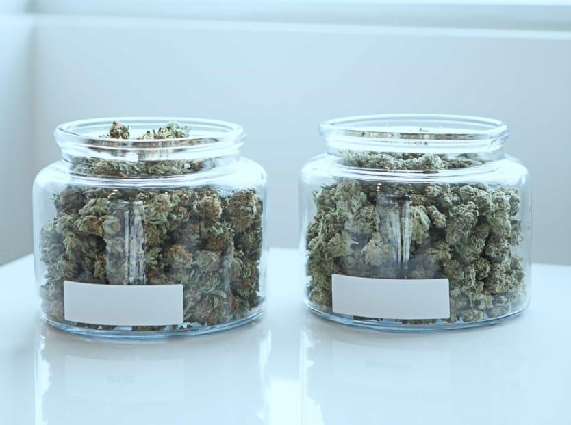 Medical marijuana vs recreational marijuana.