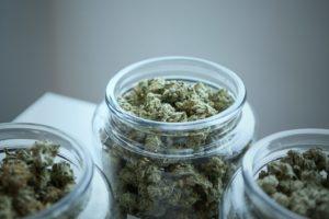 marijuana in jars at a Detroit dispensary for medical and recreational marijauana users