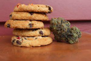 marijuana bud propped next to cookie edibles